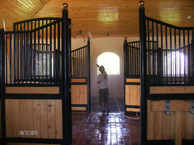 Sparkling stables with Bea'vs