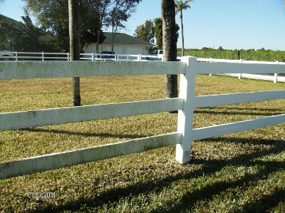 Paddock Fences attract mold, mildew, fungus and other organic material