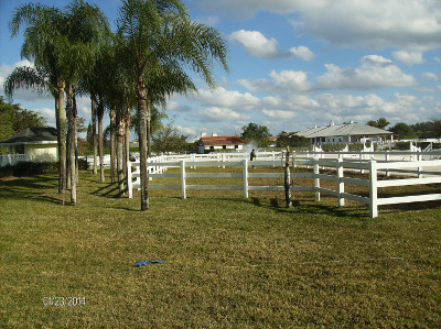 Beautify and protect your fencing with Beav's