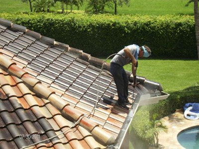 Clean your gutters while washing your roof.