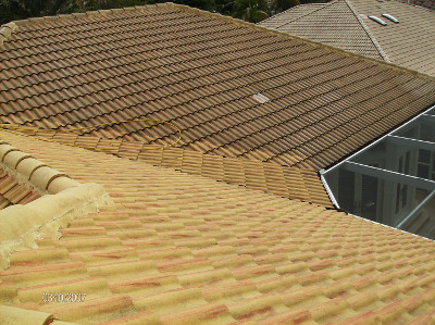 Roof cleaning from Beav's makes your roof look like brand new.